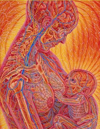 Кормление грудью: вопросы и ответы
