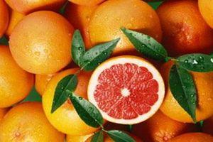 С грейпфрутом не сочетаются многие из лекарств, которые часто прописывают врачи