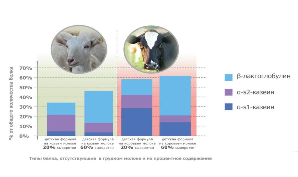 Различия козьего и коровьего молока по качеству и составу