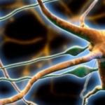 Рассеянный склероз. Реабилитация на дому