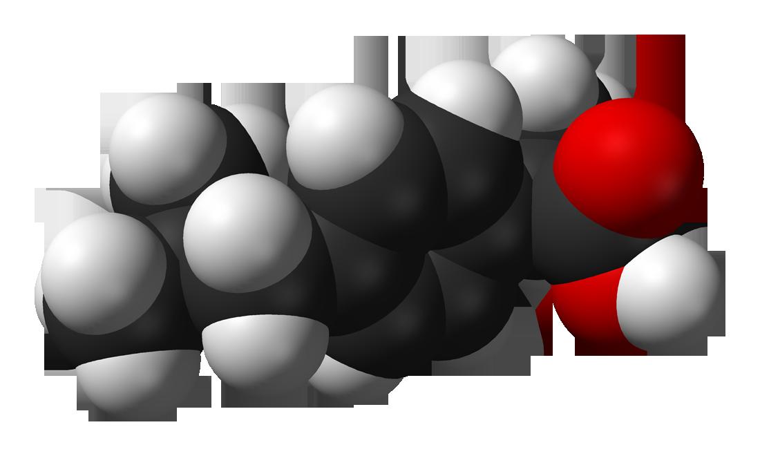 Ибупрофен повышает продолжительность жизни