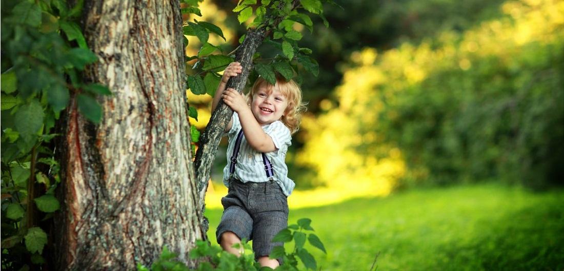 Знакомство детей с живой природой