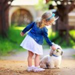 Топ 10 лучших пород собак для семьи