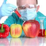 9 ключевых вопросов о ГМ-продуктах, ответы на которые вы должны знать