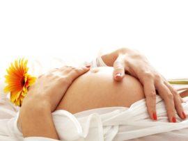 Искусственная матка может стать альтернативой естественной беременности