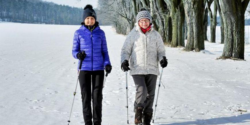 Что важно знать о скандинавской ходьбе