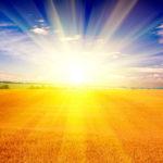 Солнце жжет, как крапива