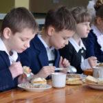 В Совете Федерации ведётся разработка законопроекта по вопросам школьного питания