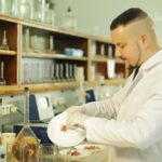 Доказана связь нездоровой пищи с возникновением неинфекционных болезней