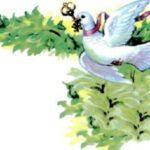 Белый голубок. Немецкая народная сказка
