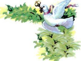 Белый голубок
