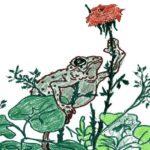Сказка о жабе и розе. Всеволод Михайлович Гаршин