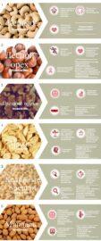 виды и ценность орехов